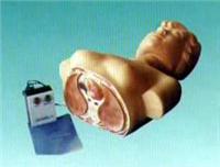 觸電急救救援模型|新型人體半身心肺複蘇模型(女) NT-1