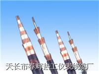 氟塑料絕緣耐高溫補償電纜 ZR-KX-FVR KX-FFP