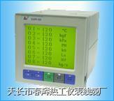 SWP-LCD-R無紙記錄儀 SWP-LCD-R8303-811-2323/12-HH-2P