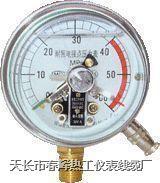 YN耐振壓力表 YN-60 YN-100 YN-150 YN-200