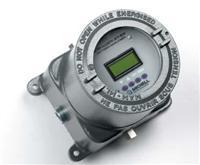 危险场合用氧气分析仪 XTP600
