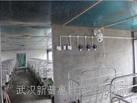 动植物畜牧养殖解决方案提高产量 PHYZ