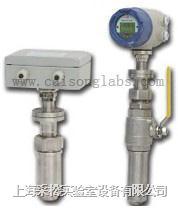 插入式电磁流量计 CN13