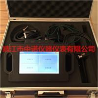 智能型數字管道泄漏檢測儀 ACEPOM681