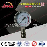 不锈钢耐温耐腐压力表