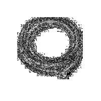 不锈钢丝编织聚四氟乙烯软管