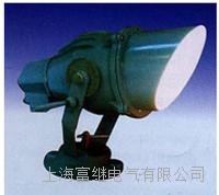 DZJ-1平台投光灯  DZJ-1