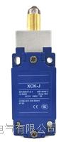 XCK-J167H29C行程開關 XCK-J167