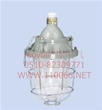 隔爆型防爆燈 dZ52-125X/D    dZ52-125G/D  dZ52-125B30/D