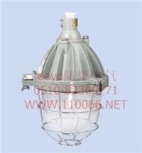 隔爆型防爆燈(ⅡB) dZ53-125 I X/D   dZ53-125 I G/D  dZ53-125 I B30/D