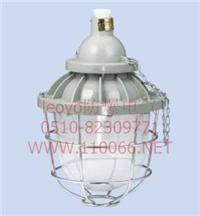 隔爆型防爆燈 dZ53-125 Ⅱ X/D    dZ53-125 Ⅱ G/D  dZ53-125 Ⅱ B30/D