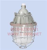 隔爆型防爆燈 dZ54-250X/D   dZ54-250G/D  dZ54-250B30/D