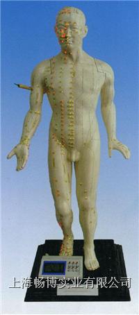 人体经络模型 针灸模型 光电感应键控人体针灸穴位发光模型 CBBZ-100E