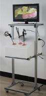 腹腔镜手术训练箱及系列模型 CBB-FQJ500