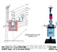 實驗用磁力反應釜 WDFS