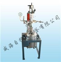水熱反應釜 WHF