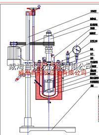 5L实验用高压釜 WHFS-5L