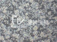 PC-12 (未分化)大鼠腎上腺嗜鉻細胞瘤細胞 CRL-1721