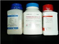 革蘭氏染色液試劑盒 ohb-w2001