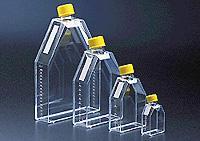 25cm2正方斜口細胞培養瓶 orj-1647