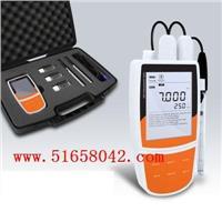 多参数水质检测仪/多参水质分析仪