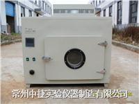 電熱恒溫幹燥箱 202