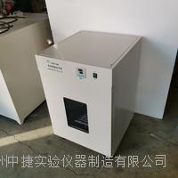 电热恒温培养箱 DHP-500