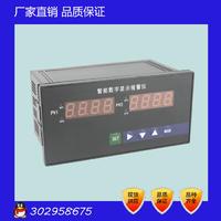NPXM-4012P0 雙通道智能數字顯示報警儀 智能雙路顯示儀表 NPXM-4012P0
