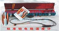 高温标准铂电阻温度计 WZPB