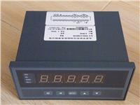 转速.线速.频率测量控制仪 XSM