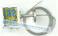 多点铠装热电偶 WRN-230D