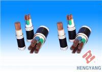 交聯聚乙烯絕緣聚氯乙烯護套控製電纜
