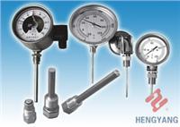 各種雙金屬溫度計