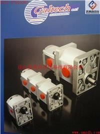 意大利GALTECH齒輪泵,GALTECH單聯泵,GALTECH多聯泵,GALTECH泵,GALTECH液壓閥,GALTECH多路閥 1SPA,2SPA,3SPA,Q25,Q30,Q35,Q45,Q50,Q75,Q80,Q130