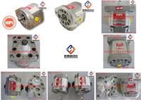 HPI油泵,HPI齒輪泵,HPI PUMP,P3AAN0075FL20B01N-C5082379 P1BAN1001FL10B01N-C5080590,P3AAN0075FL20B01N-C5082