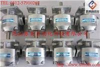 日本(NIHON SPEED)K1P齒輪泵,K1P10R11A齒輪泵,K1P10L11A油泵,K1P10RV11A泵 K1P10R11A,K1P10L11A,K1P10RV11A