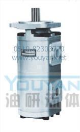 双联齿轮油泵 CBG2040/2040-BF CBG2050/2040-BF CBG2050/2050-BF 油研双联齿轮油泵 YOUYAN双联齿轮油泵  CBG2040/2040-BF CBG2050/2040-BF CBG2050/2050-BF