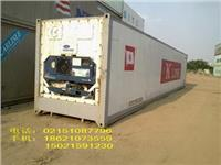 上海冷藏集裝箱二手集裝箱租賃 上海冷藏集裝箱二手集裝箱租賃