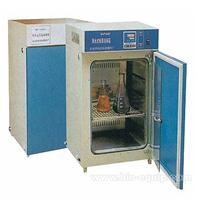 隔水式恒温培养箱DHP-9050