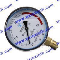 耐震压力表 YN100ZT
