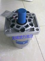 合肥长源齿轮泵CBTD-F419.2-ALH4L CBTD-F419.2-ALH4L