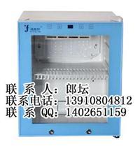 FYL-YS-50L小型醫用加溫箱