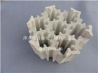 萍鄉百盛多孔比重輕全瓷組合填料 230MM