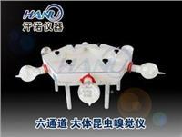 上海大体昆虫嗅觉仪  HN6-30-300