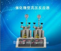 催化微型高压反应器