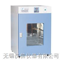 电热恒温培养箱 VS-9162AE