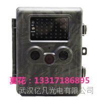 現貨供應Onick AM-990V野生動物監測相機 監測相機AM-990V報價 AM-990V