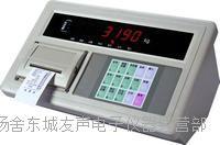 地磅顯示器 XK3190-A9+P