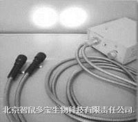 冷光源(雙頭) DB035