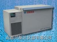超低溫冰箱 DW-W328